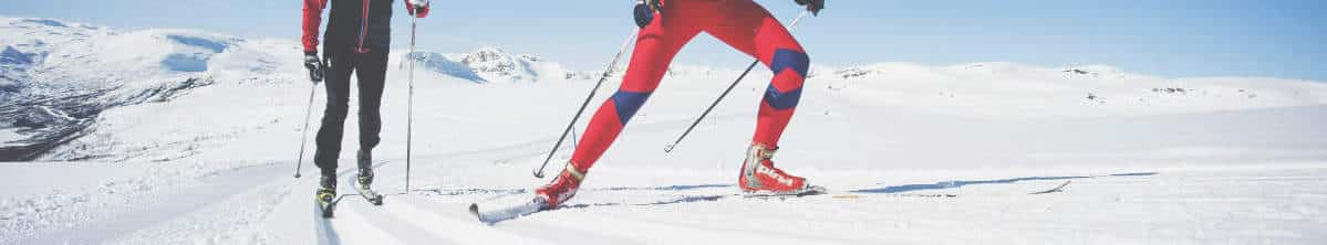 Grupperejse med ski